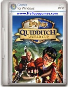 Harry Potter Quidditch World Cup Game