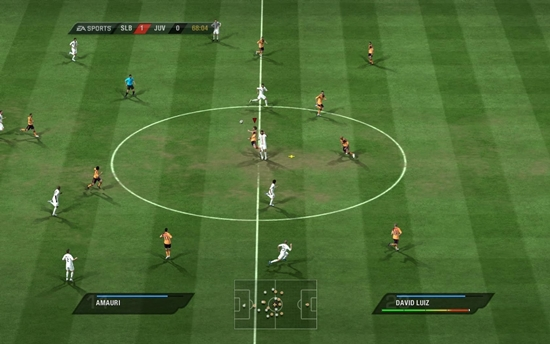 FIFA 11 Game Picture