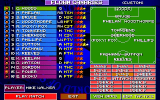 Sensible World Of Soccer 96-97 Game Picture