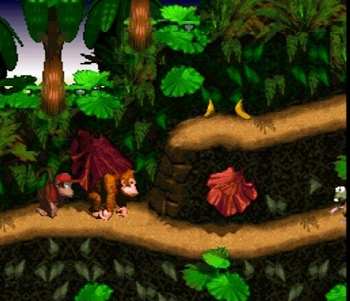 Donkey Kong Country Game Picture