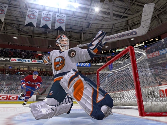 nhl-06-game-picture-2
