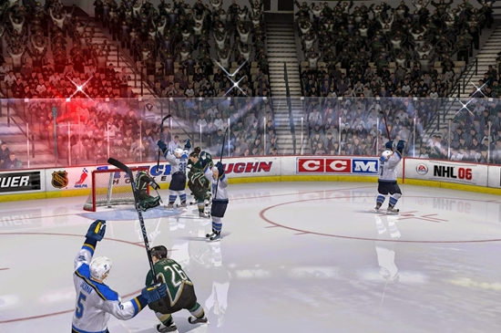 nhl-06-game-picture