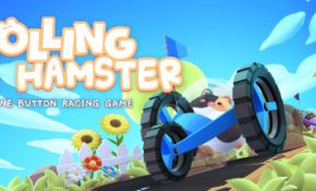 Rolling Hamster Game Download